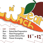 Lunch N Learn