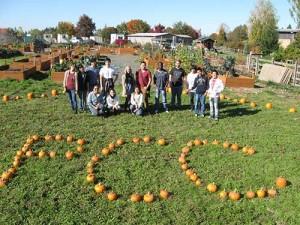 pcc-pumpkins