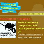 The edible schoolyard project program of the week: pcc Rock Creek learning garden