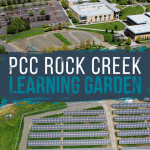 RC Learning Garden