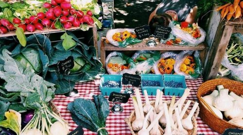 Veggies displayed for sale on the Farm Stand table