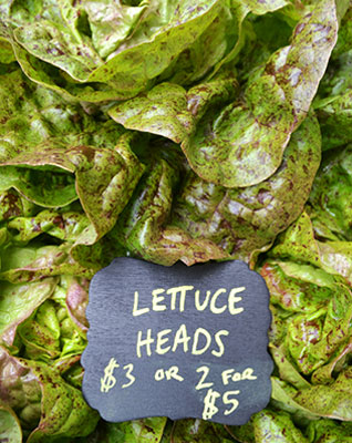 Lettuce for sale