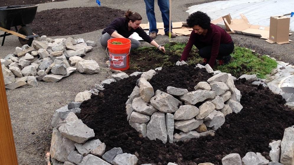 People building garden beds