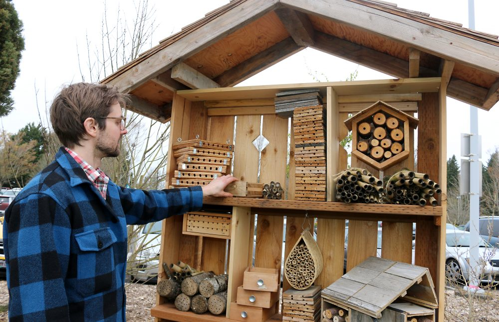 Man stands near many artistically created beehives.