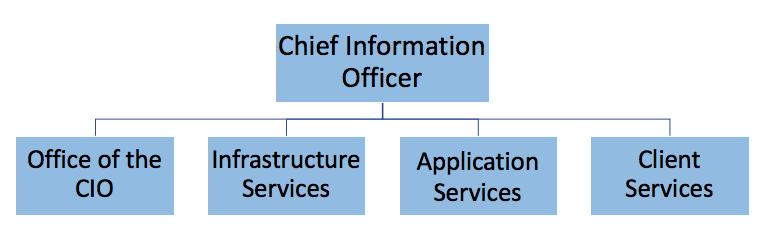 IT organization structure diagram