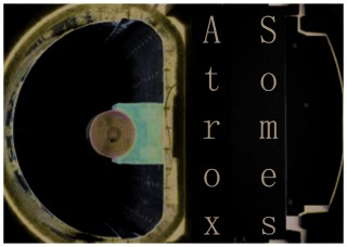 The Atrox Somes exhibition is comprised of a group of artists who have confronted a life changing health issue.