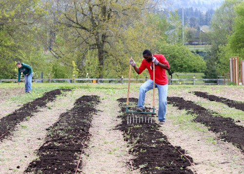 Today, the garden is home to a 65-tree fruit orchard, 32 large raised beds and approximately a half-acre of row crops and areas for grapes, kiwis, blueberries, and cane fruits.