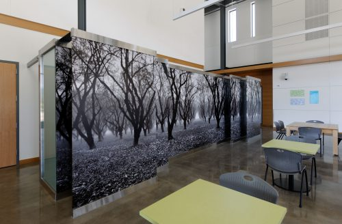 """""""A Sacred Place,"""" featuring an orchard near Dayton, Oregon, was made by fine-art photographer Marilyn Affolter. The large glass panels camouflage a row of vending machines in Newberg Center's foyer."""