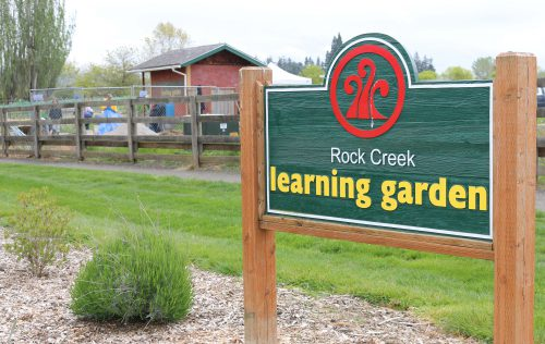 Locally sourcing food from community gardens on campuses helps PCC meet its climate goals.