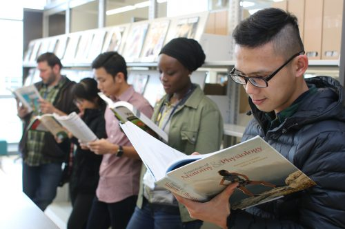 Depending on what class sequence a student takes, they could be eligible to buy a low-cost or no-cost textbook for their course.