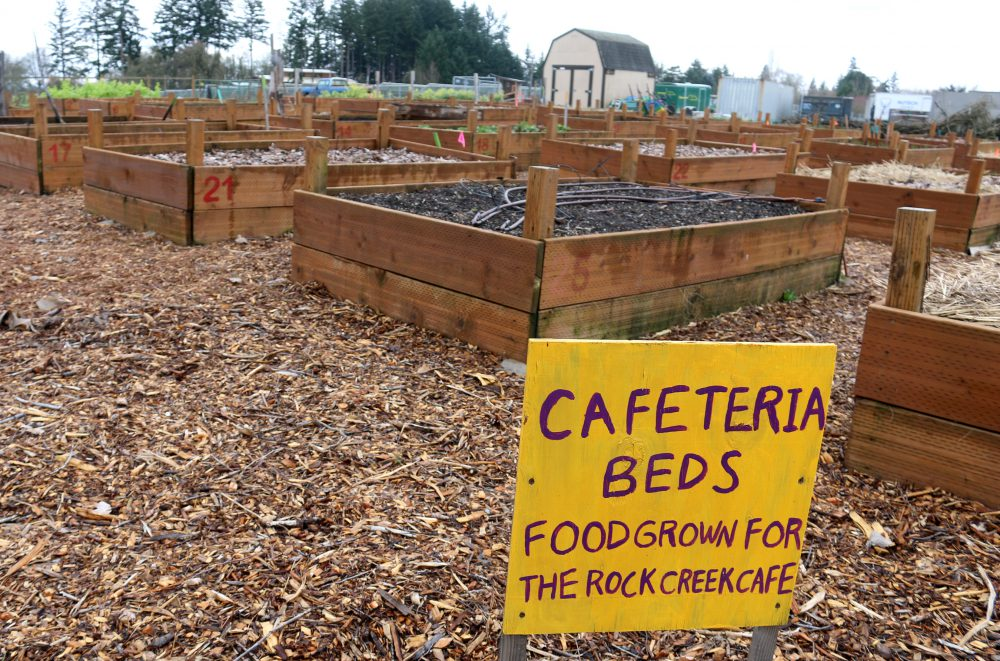 PCC's sustainability team has worked with Food Services to source local food options, including produce from the Rock Creek campus-learning garden.